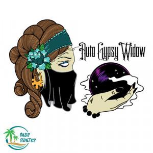 Auto Gypsy Widow Feminized Seeds